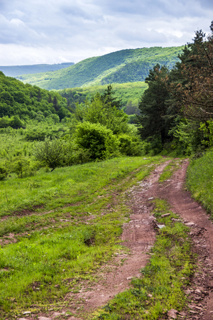 road to the forest and mountains in background in Ternopil region of western Ukraine