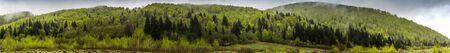 the panoramic view of landscape of the carpathian mountains, national park Skolivski beskidy, Lviv region of Western Ukraine