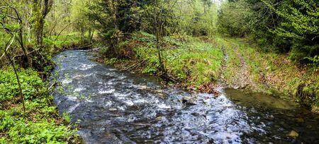 a small fast river in the forest, national park Skolivski beskidy, Lviv region of Western Ukraine