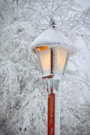 snowlandscape: Bright shining snowy street lamp
