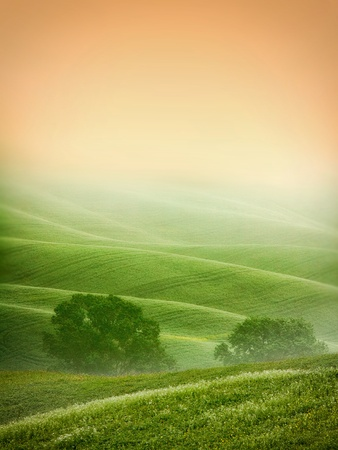 meadow: Rural countryside landscape in Tuscany region of Italy