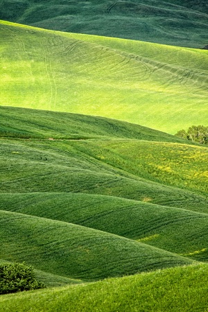 vista: Rural countryside landscape in Tuscany region of Italy