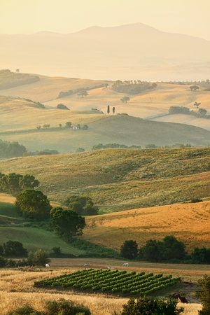 tuscany: Rural countryside landscape in Tuscany region of Italy