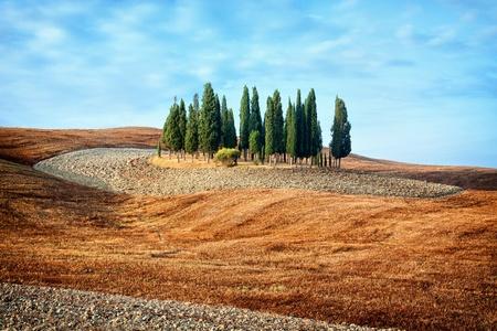 Vista panorámica del paisaje típico de la Toscana