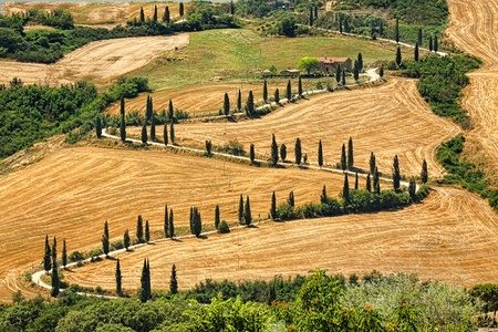 sinuous: Beautiful landscape in Tuscany with sinuous road