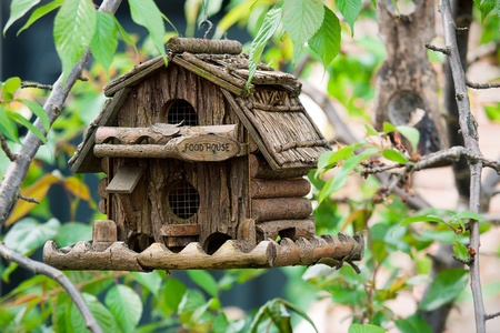 Beauty handmade creative bird box photo