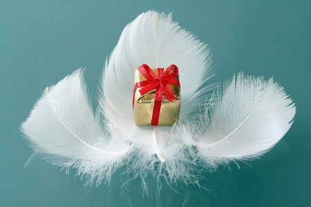 Small romantic present on white feathers photo