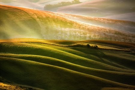 Abstract view of the hill Tuscan countryside