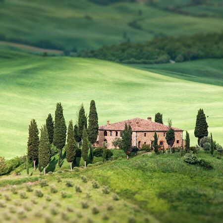yeloow: Scenic view of typical Tuscany landscape Stock Photo