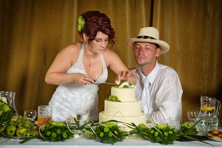 Bride and Groom Cutting the Wedding Cake photo