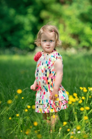 Cute little girl in a meadow full of flowers photo