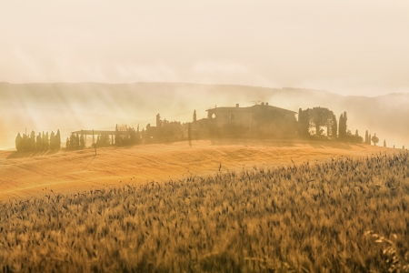 Early morning on countryside, San Quirico d�Orcia, Tuscany, Italy photo
