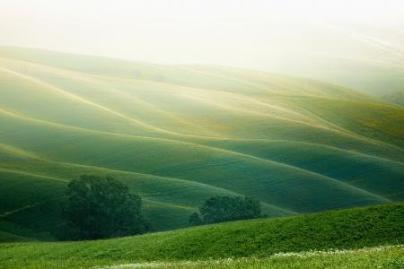 campagne rural: Paysage de campagne en milieu rural en Toscane r�gion de l'Italie Banque d'images