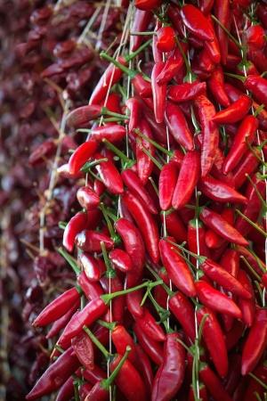 chiles picantes: Cierre de chiles rojos calientes en el mercado