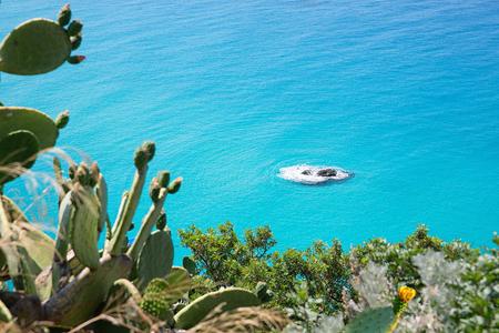 トロペーア町地域カラブリア - イタリアの近くの海岸 写真素材