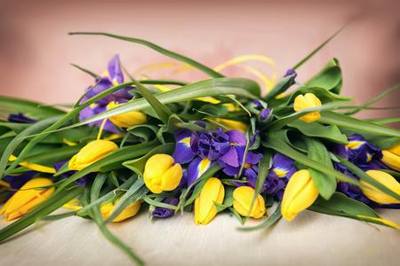 purple irises: yellow tulips and purple irises as background