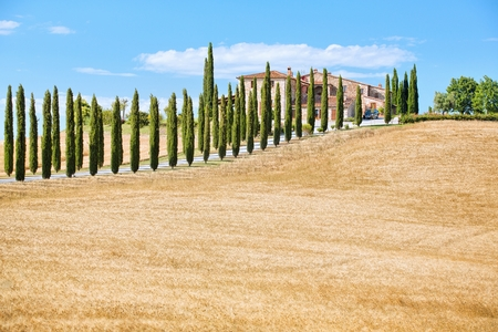 tuscan house: Scenic view of typical Tuscany landscape Stock Photo