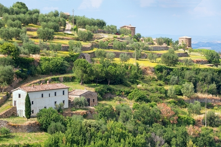 tuscan house: Near surroundings - landscape picturesque Tuscan town of Montalcino
