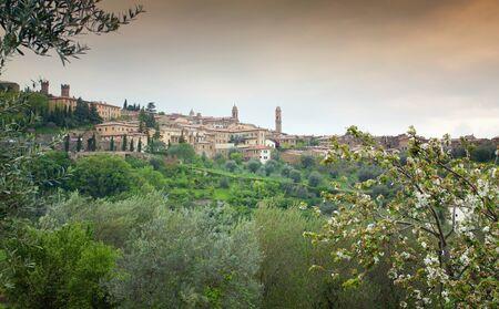 montalcino: Spring scenery of old town of Montalcino in Val dOrcia area
