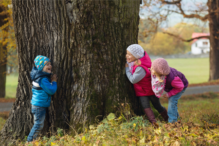 seek: Portrait little children as they play hide and seek in the park