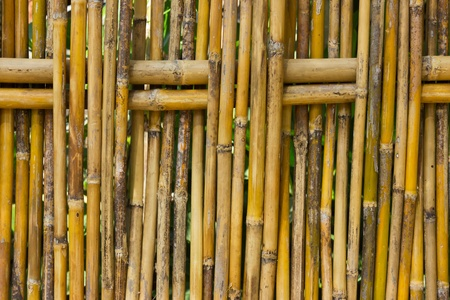 demarcation: Bamboo fence for demarcation and decorations.