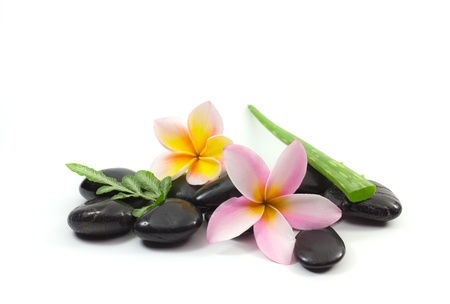 Spa stones and Frangipani flower