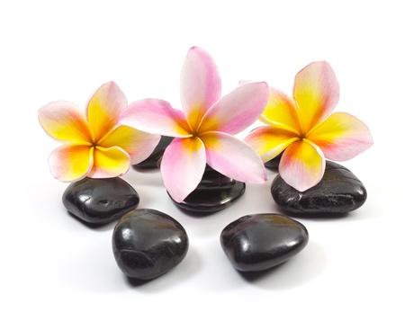 Spa stones and Frangipani flowers. Stock Photo