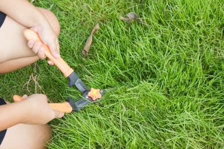 Mowing green grass with scissors. photo