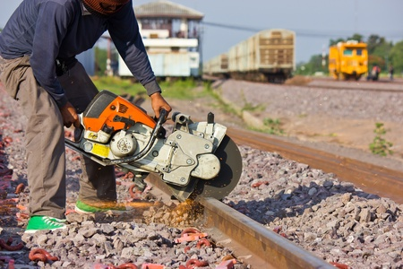 Workers were cutting tracks for maintenance  photo