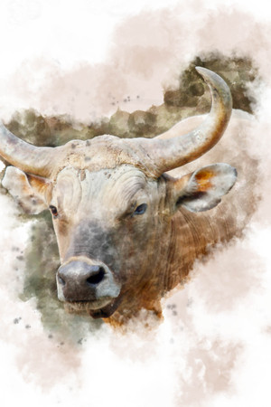 thai style: Banteng painted with watercolors. Stock Photo