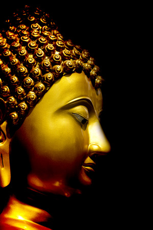 buddha statue: Gold Buddha statue on black background