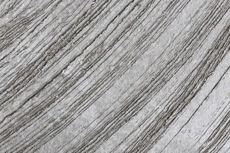 curved lines: Abstract curved lines and surfaces of cement. Stock Photo