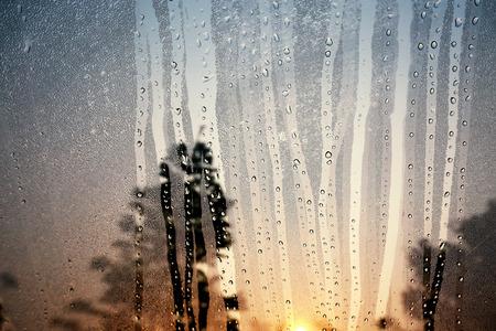 condensacion: La condensación de vidrio en la mañana.