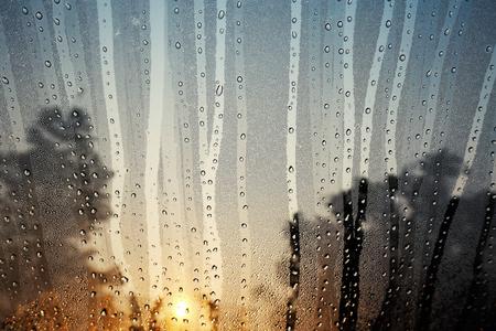 condensation: La condensación de vidrio en la mañana.