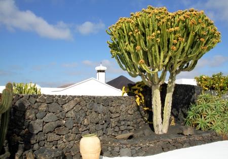 manrique: Cesar Manrique-Haus, Tahiche, Lanzarote
