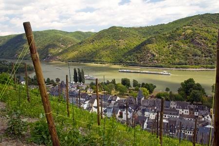 rhein: Bacharach am Rhein