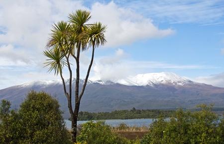 tongariro: Neuseeland, el monte. Tongariro