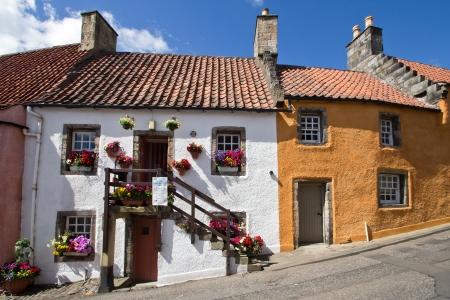 blumen: Schottland, Culross