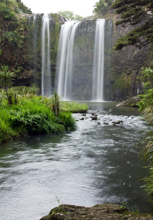 Whangarei Falls, Bay of Islands photo