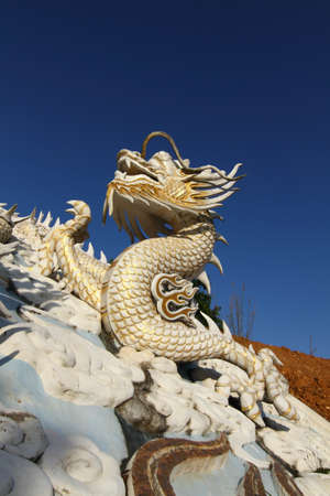 white dragon statue photo