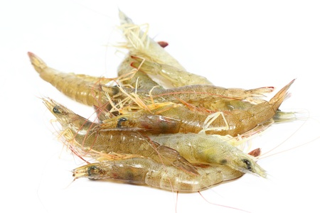 fresh prawn Stock Photo