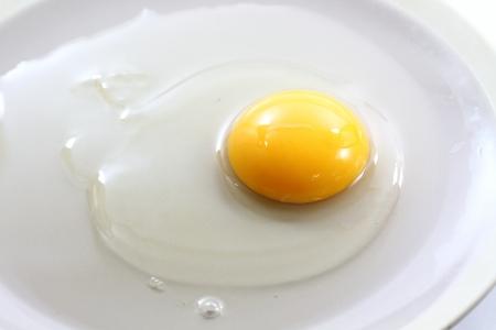 Egg yolk closeup on white