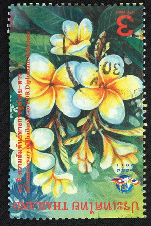 diplomatic: THAILAND - CIRCA 2011 A stamp printed in Thailand shows 60th Anniversary of the Thailand -Lao PDR Diplomatic Relations, circa 2011 Editorial
