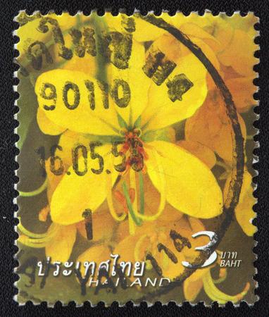 golden shower: THAILAND - CIRCA 2003 A stamp printed in Thailand shows image of Golden Shower Tree, circa 2003
