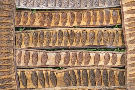 pulcherrima: pattern made from dried  Caesalpinia pulcherrima sheath tree use for background