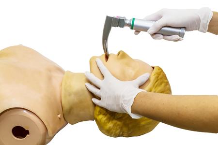 resuscitation: Hand and white medical gloves of doctor demonstration resuscitation CPR Technique by laryngoscope blade for insert endotracheal tube on model