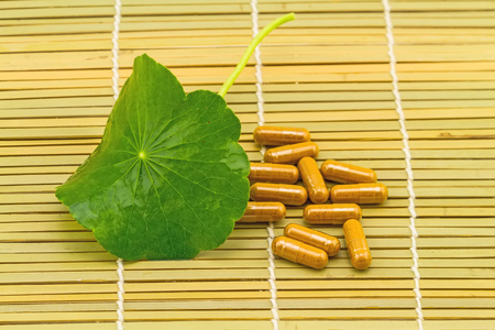 longevity drugs: Green Asiatic Pennywort Centella asiatica  and yellow pill capsules on brown bamboo weave background