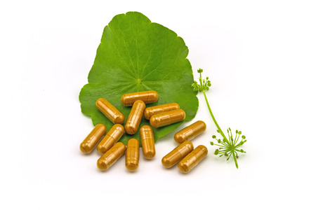 longevity medicine: Green Asiatic Pennywort Centella asiatica  and yellow pill capsules on white background