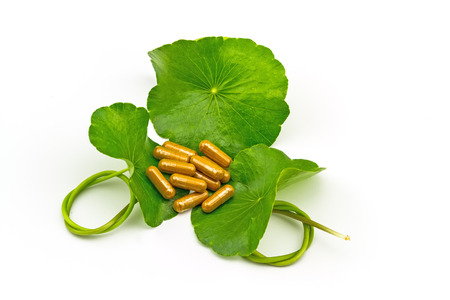 longevity drugs: Green Asiatic Pennywort Centella asiatica  and yellow pill capsules on white background