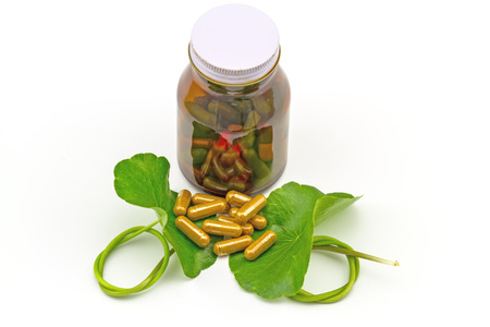longevity drugs: Green Asiatic Pennywort Centella asiatica  and yellow pill capsules and  bottle tablets on white  background Stock Photo